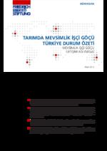 Tarımda mevsimlik işçi göçü Türkiye durum özeti